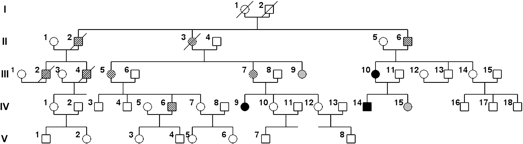 N88s mutation in the bscl2 gene in a serbian family with Hereditary motor neuropathy